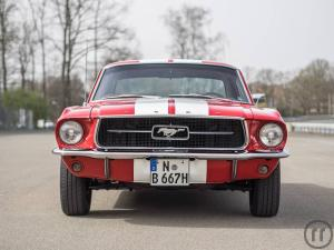 Ford Mustang Coupé Oldtimer 1967 selbst fahren in Frankfurt