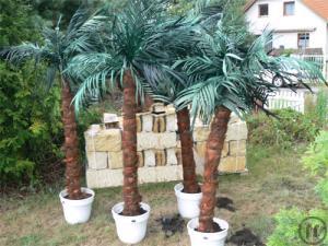 Kunstpflanzen mieten rentinorio for Party deko mieten