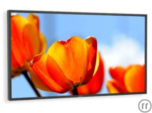 "52"" FullHD Display"